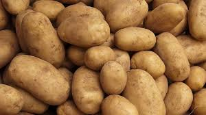 Kenya, Netherlands in Deal to Boost Potato Yield
