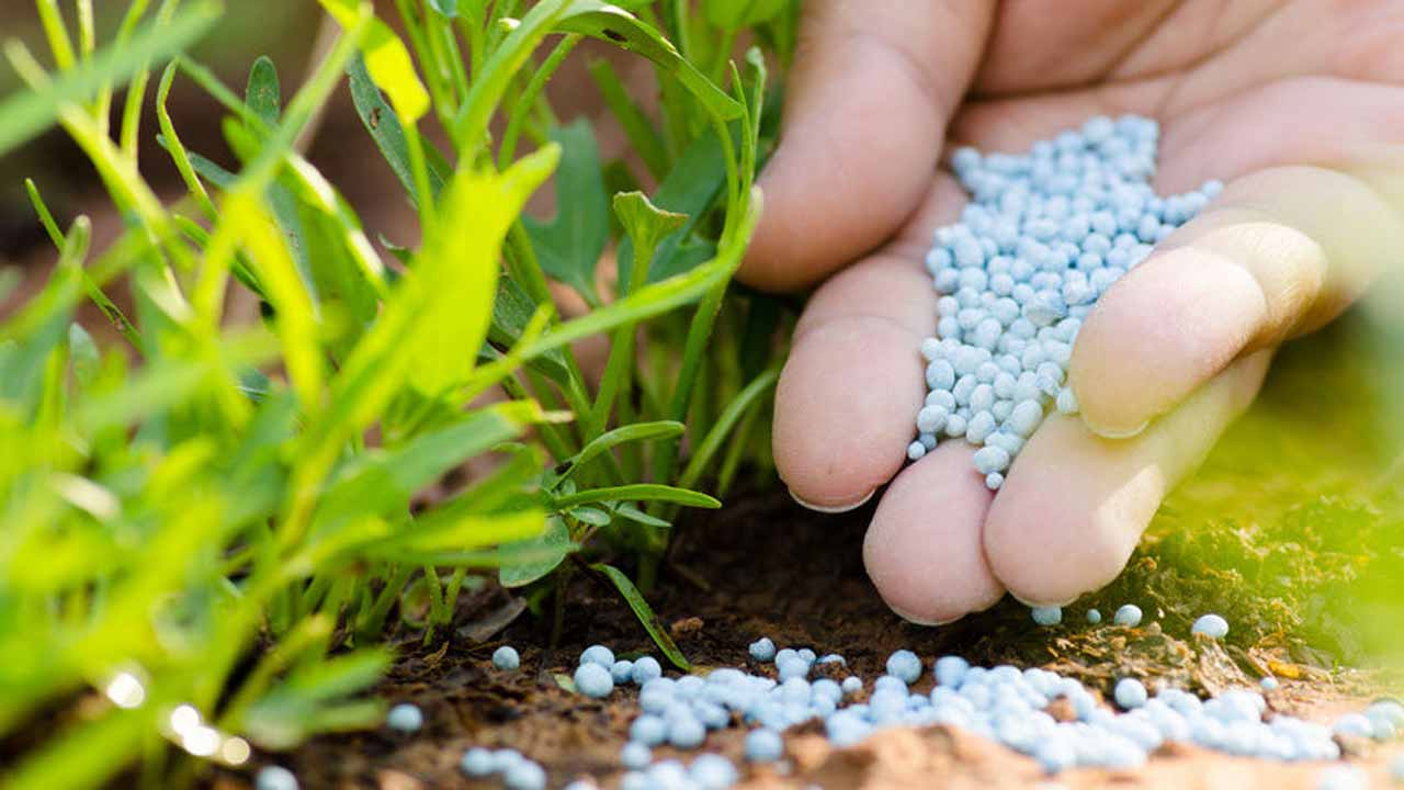 Agriculture stakeholders allege re-emergence of fertilizer cabal