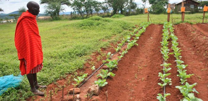 Kenya sees launch of high-tech anti-hunger effort