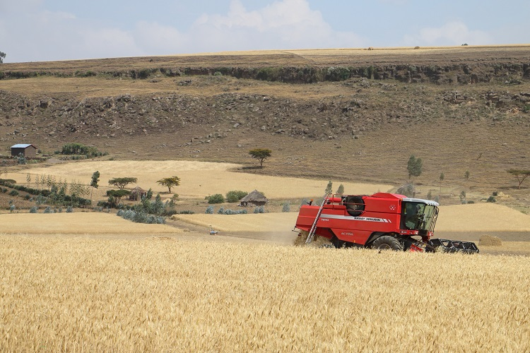Combine and forage harvesters