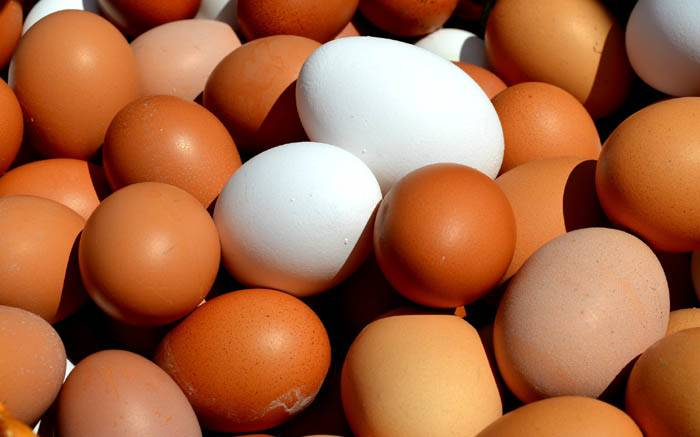 Egg prices may not be as festive