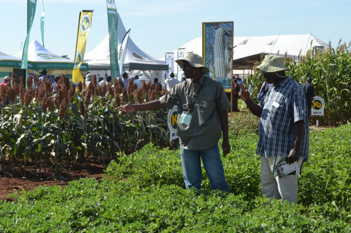 e-FISP initiative prime example of Zambian government and agri working together – Musika