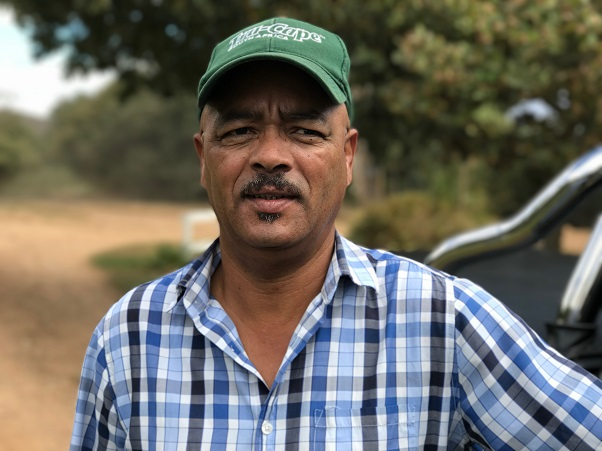 Hail and sunburn impact the exportable 2018 South African crop