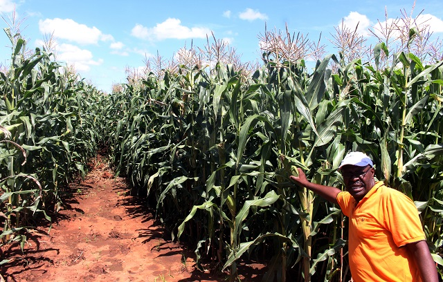 Command agriculture face collapse-Land Minister hint