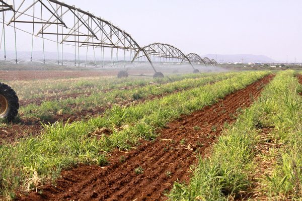 Zimbabwe government launches US $200 000 project for rehabilitation of 2 major irrigation schemes