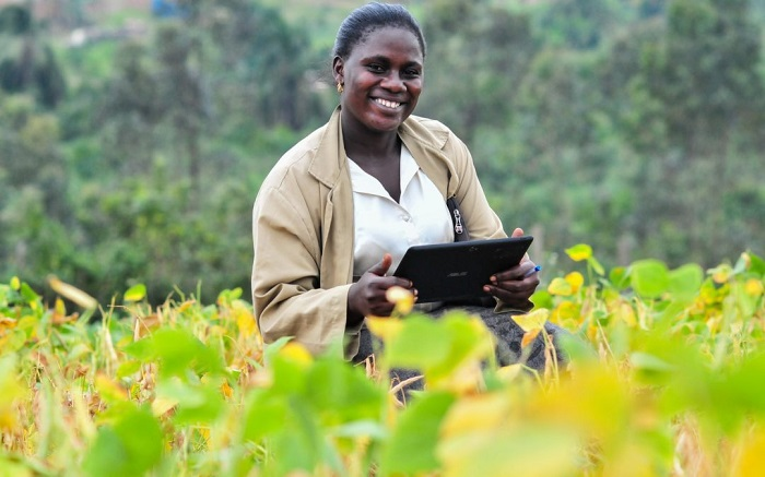 UNEP working towards boosting smart agriculture in Africa