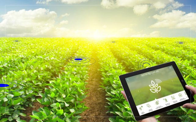 Why should you consider internet of things (IOT) in agriculture market