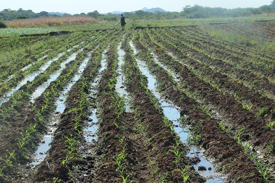 NADIP gets US $48m to revive irrigation in Zimbabwe