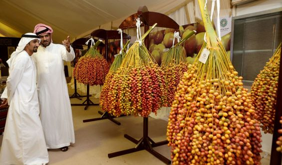 The KHALIFA International Award for Date Palm and Agricultural Innovation in its 13th  Session (2021)