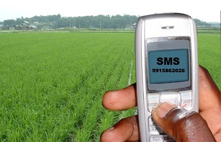 Essential farming skills provided via SMS