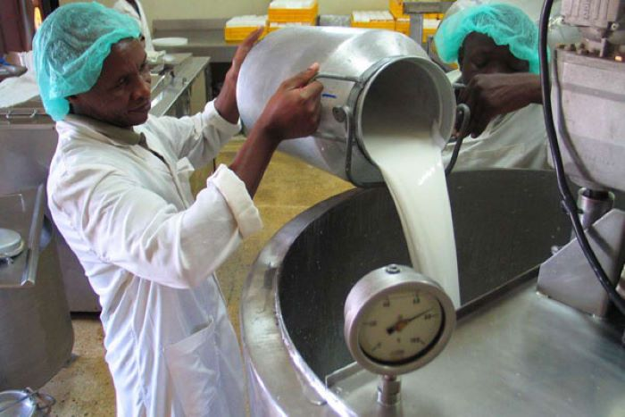 Low milk production in Kenya to warrant imports