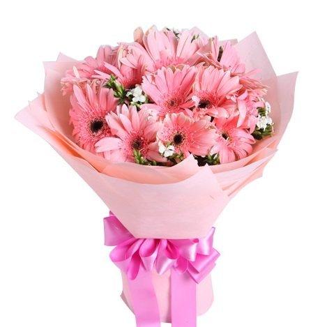 andrea 15 gerbera bouquet by farm florist singapore