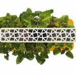 Click-Grow-Indoor-Smart-Herb-Garden-0-0