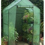 Happy-Planter-Walk-in-Portable-Greenhouse-with-Shelving-63-x-4-x-63-0