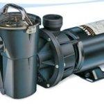 Hayward-Power-Flo-LX-Series-Pool-Pump-with-Twist-Lock-0