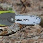 Sun-Joe-Telescoping-Pole-Chain-Saw-with-Brushless-Motor-0-1