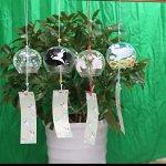 4-piece-Handmade-Japanese-Edo-Furin-Wind-Chimes-Suncatcher-Home-Living-Decor-Birthday-Gift-Fathers-Day-Christmas-Gift-Rabbit-0-0