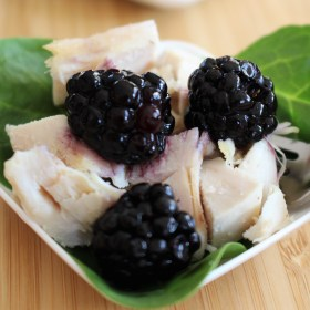 Blackberry Balsamic Vinegar Chicken Salad Recipe + Giveaway