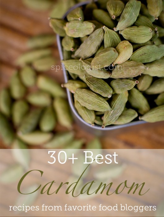 Over 30 Best Cardamom Recipes | spiceologist.com