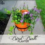 Bird Bath Planter How To