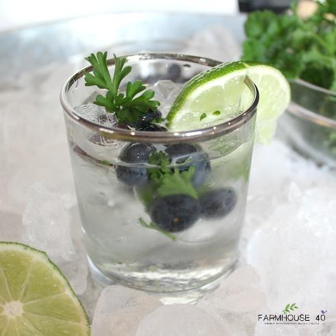 Blueberry-cilantro-mule-cocktail