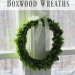DIY Preserved Boxwood Wreaths
