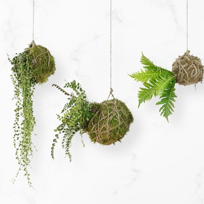 DIY: String Garden Decor