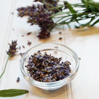 Easy to Make Fresh Lavender Syrup Flavoring