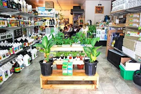 hydroponics store near my location