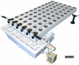 Modern Aeroponic System