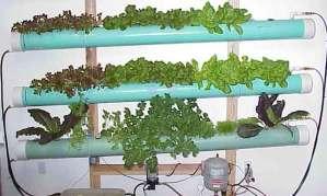 Aeroponic gardening kits