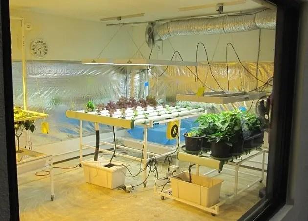 large indoor Hydroponic grow room