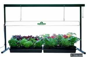 Foot Jump Start Grow Light System