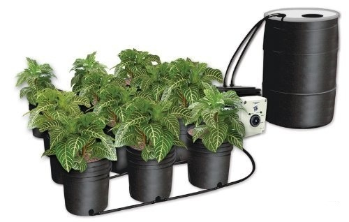 NEW C.A.P EBB-12 EBB & GRO 12 Site Hydroponic Sytems + Starter Kit Nutrients CAP