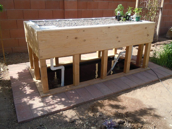 DIY Aquaponics Grow Beds