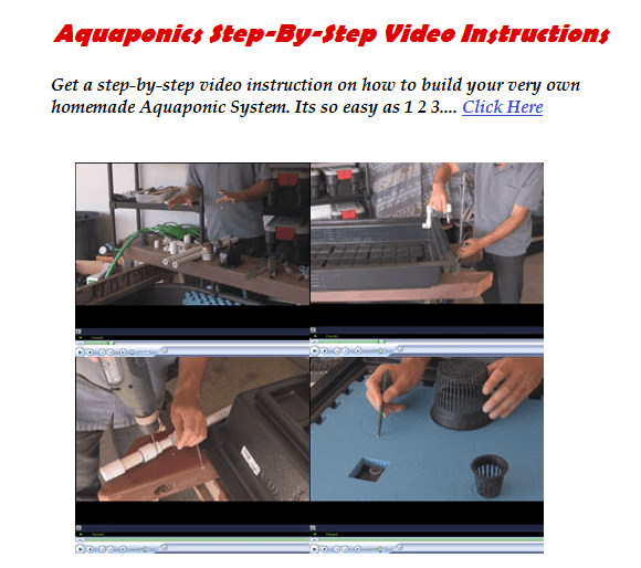 Difference Aquaponics Systems And Hydroponics