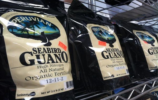 Peruvian seabird guano