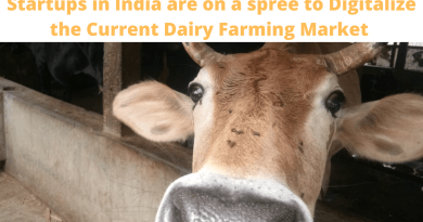 Startups in India are on a spree to Digitalize the Current Dairy Farming Market