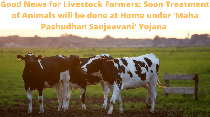 Good News for Livestock Farmers: Soon Treatment of Animals will be done at Home under 'Maha Pashudhan Sanjeevani' Yojana