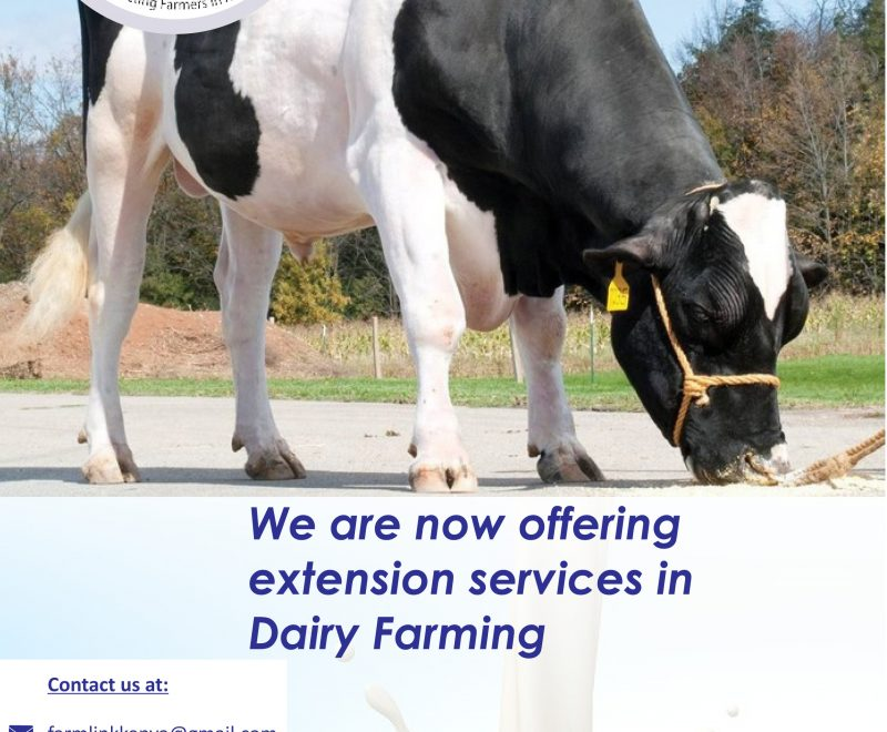 dairy farm extension_one