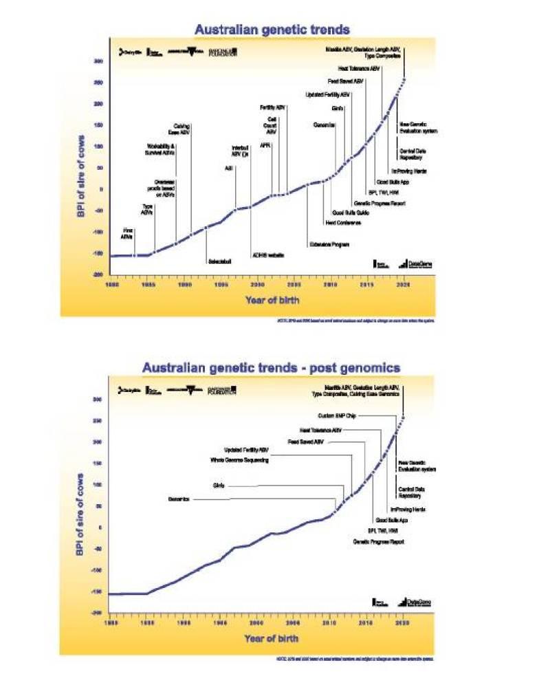 Figure 1: Australian dairy cow genetic trends (courtesy of DataGene)
