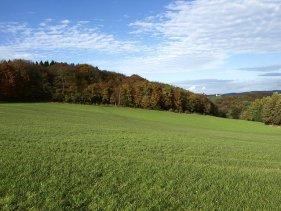 Farmstay In North Rhine-Westphalia