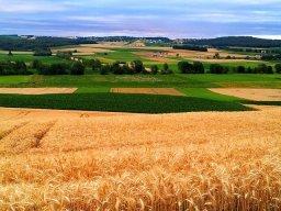FARMSTAY LOWER AUSTRIA & BURGENLAND
