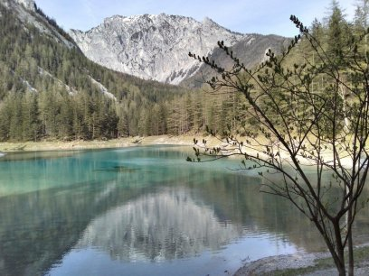 Styria, farmstay Austrian Alps.