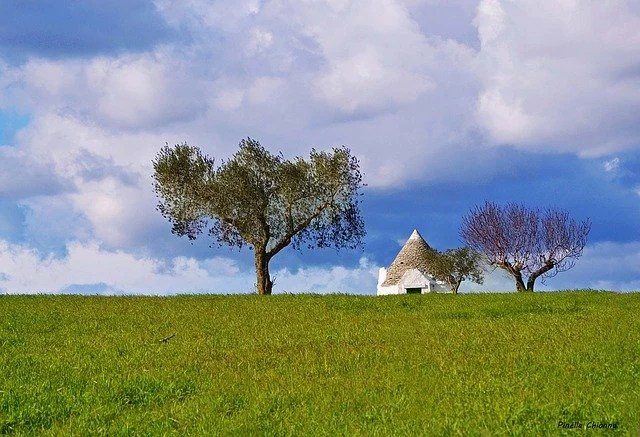 Countryside view in Puglia, Italy.