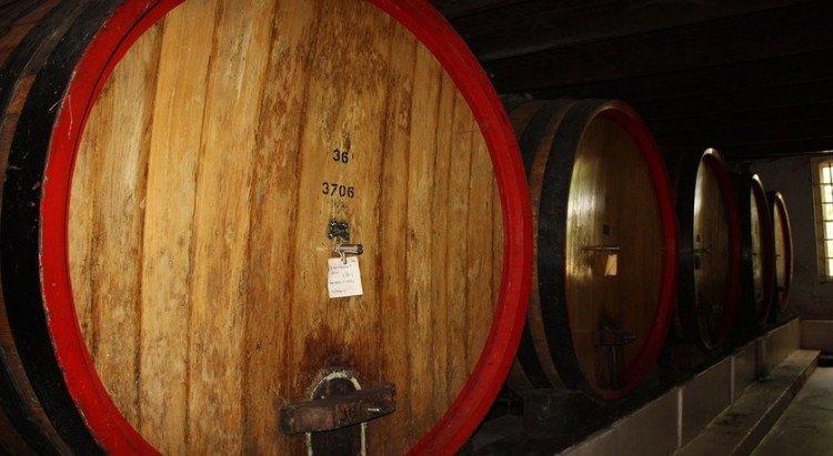 Vineyard hotel in Tuscany, Italy