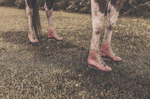 Preparing for a trip to a farm, wear good shoes
