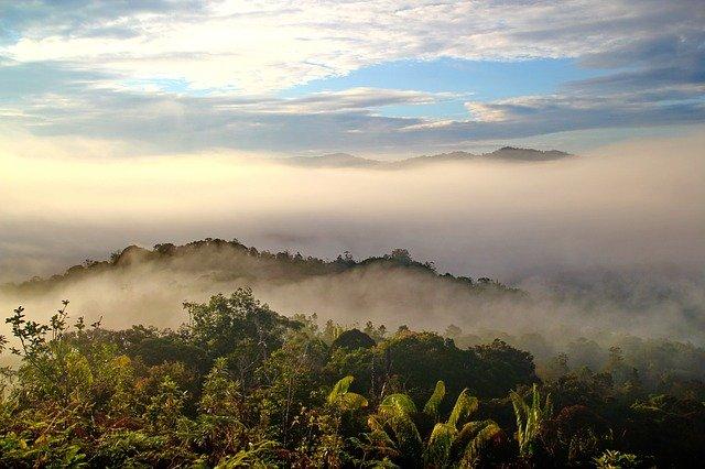 jungle trek through Sarawak, Borneo, Malaysia