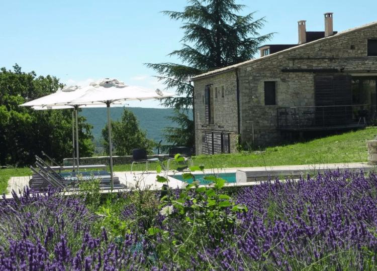 Lavender at Le Hameau de Pichovet, Provence