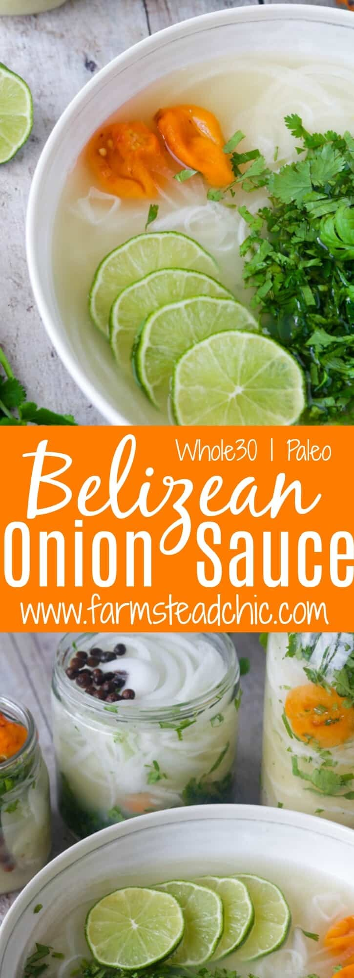 With just a few simple ingredients, this Whole30 and Paleo Belizean Onion Sauce is so easy to make and full of nutrients.  Put it on everything from taco bowls to chicken and cauliflower rice or just eat it with grain free tortilla or veggie chips!